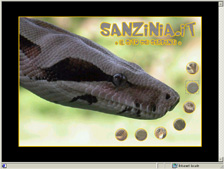 homepage Sanzinia.it
